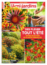 HS_195 100 PLANTES ANNUELLES-