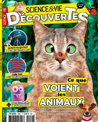 SCIENCE & VIE DECOUVERTE_259