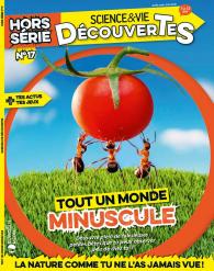 Science & Vie Découvertes_17