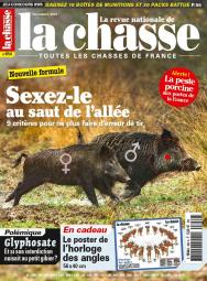 LA CHASSE_854