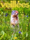 LES VEILLEES DES CHAUMIER_3490